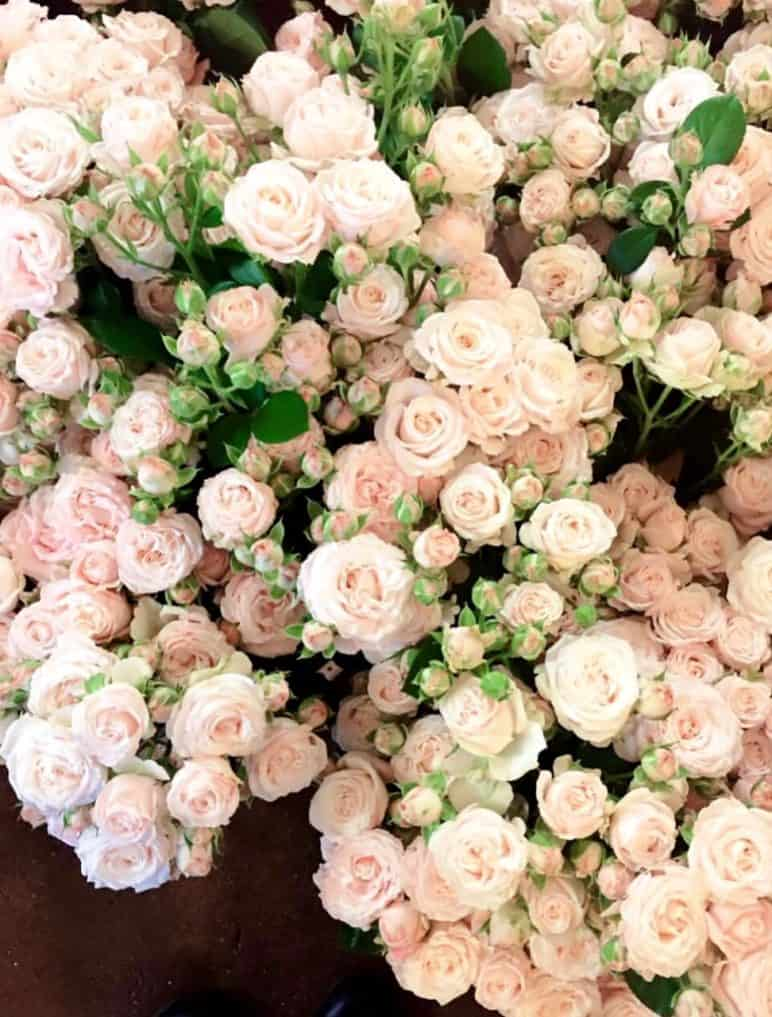 2823a65f438 Kobarroos. Saadame lilled kulleriga spetsiaalses karbis. Studio Nelk