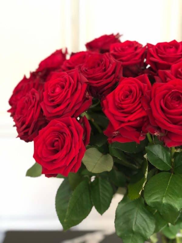 Punased roosid kulleriga