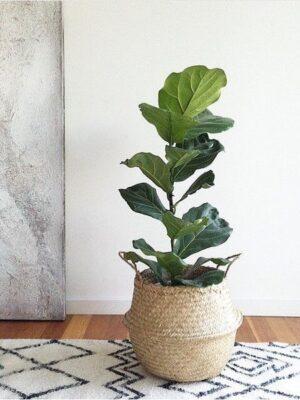 Punutud lillepotiümbris 31cm