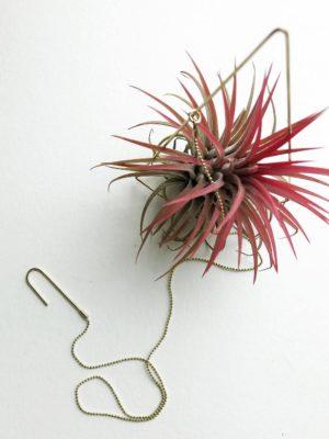 Plant Holder Brass Tringle nr.1