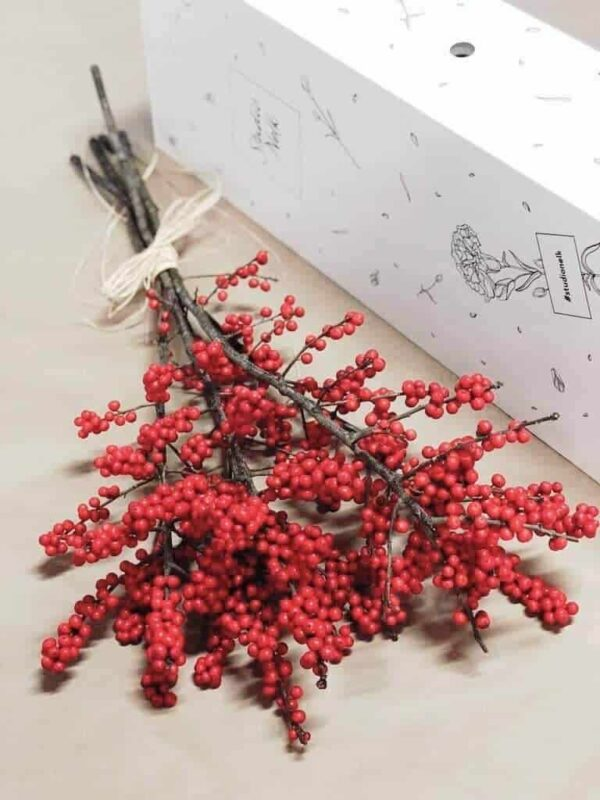 Ilex jõulumarjad