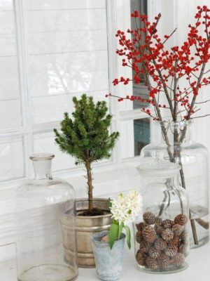 Ilex ehk Winterberry
